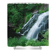 Warner Falls Shower Curtain by Michael Peychich