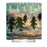 Wash Day Shower Curtain by Bob Orsillo