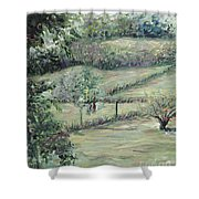 Washday In Provence Shower Curtain