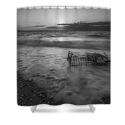 Washed Up Crab Cage 16x9 Bw Shower Curtain