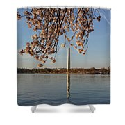 Washington Monument With Cherry Blossoms Shower Curtain by Megan Cohen