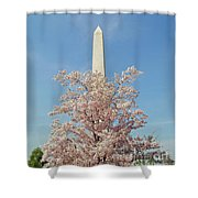 Washington Mounument Shower Curtain