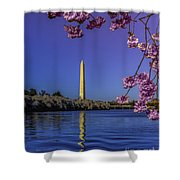 Washington Reflection And Blossoms Shower Curtain