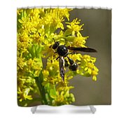Wasp 2 Shower Curtain