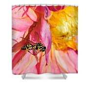 Wasp And Flower Shower Curtain
