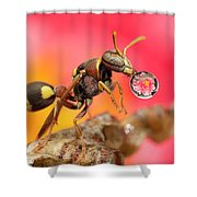 Wasp Blowig Bubble 160507e Shower Curtain