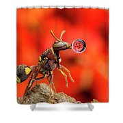 Wasp Blowing Bubble 160507c Shower Curtain