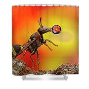 Wasp Blowing Bubble 160605d Shower Curtain