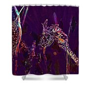 Wasp Insect Makrom Close Up Sting  Shower Curtain