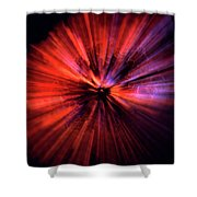 Wasp Nest Asteroid One Shower Curtain