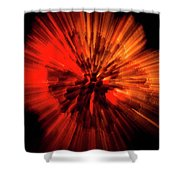 Wasp Nest Asteroid Two Shower Curtain