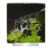 Wasp Visit Shower Curtain