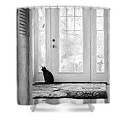Watch Cat Shower Curtain