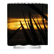 Watch More Sunsets Shower Curtain