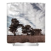 Watching Clouds Float Across The Sky Shower Curtain