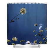 Watching The Day Float By Shower Curtain