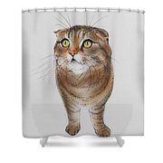 Watching The Snow Falling Shower Curtain
