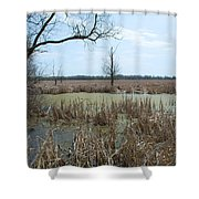 Water And Cattails Shower Curtain