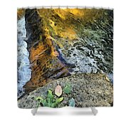 Water And Rock Shower Curtain