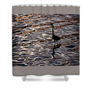 Water Bird Series 17 Shower Curtain