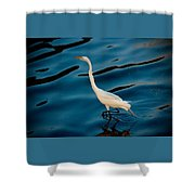 Water Bird Series 30 Shower Curtain