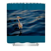 Water Bird Series 31 Shower Curtain
