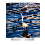Water Bird Series 9 Shower Curtain