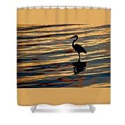 Water Birds Series 3 Shower Curtain