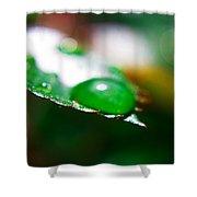 Water Diamonds 7  Shower Curtain
