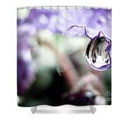 Water Drop On Purple Flower Shower Curtain