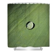 Water Droplet On Green Leaf Shower Curtain