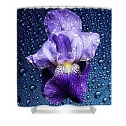 Water Drops On Purple Iris Shower Curtain