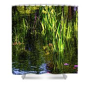 Water Dwellers Shower Curtain