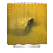 Water Flowing Over Submerged Boulder Shower Curtain