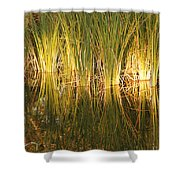 Water Grass In Sunset Shower Curtain