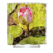 Water Hyacinth Bud Wc Shower Curtain