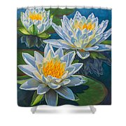 Water Lilies 12 - Fire And Ice Shower Curtain