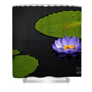 Water Lilies, Aligned  Shower Curtain