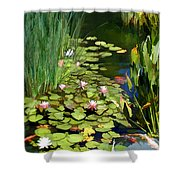 Water Lilies And Koi Pond Shower Curtain