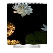 Water Lilies And Pads Shower Curtain
