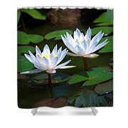 Water Lilies II Shower Curtain