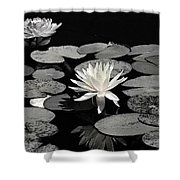Water Lilies In Black And White Shower Curtain