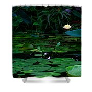Water Lilies In The Pond Shower Curtain