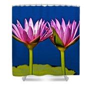 Water Lilies Touching Shower Curtain