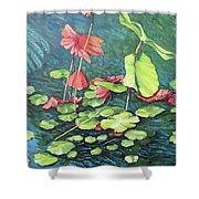 Water Lillies 1 Shower Curtain