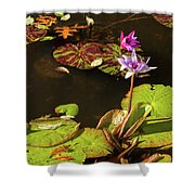 Water Lillies At Central Park Shower Curtain