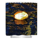 Water Lilly Bud  Shower Curtain