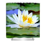 Water Lily - Digital Painting Shower Curtain