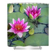 Water Lily #2 Shower Curtain