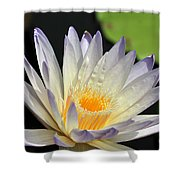 water lily 48 Green Smoke Shower Curtain